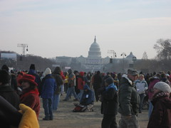 Milling on the Mall