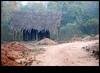 xDSC_1910 copy (sajeshjose) Tags: camp wildlife bangalore sash bannerghatta sajesh bennerghatta ireboot