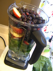 The popular vita mix juicer