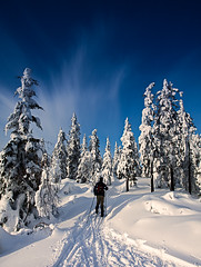 Heikampen (Zen Roxy) Tags: winter snow nature landscape outdoors skiing wide crosscountry nordmarka 5dmarkii heikampen