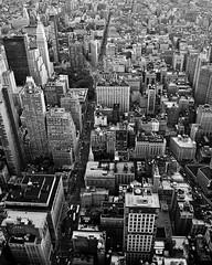 Lower Manhattan (SGCampos) Tags: city nyc newyorkcity bw usa newyork building brooklyn us nikon king state bronx manhattan newyorker queens timessquare empirestatebuilding statueofliberty wallstreet statenisland bigapple lowermanhattan newamsterdam d90 skycreeper sgcampos sgcam charlesiiofengland