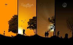 The most unfair thing in life, is the way it ends (Rui Almeida Photography) Tags: life sunset wallpaper sun tree sol grave birds backlight photoshop sunrise contraluz background fineart silhouettes illusion psd stonegrave backlighting unfair silhuetas pôrsosol redskies loveliness photoshoplife