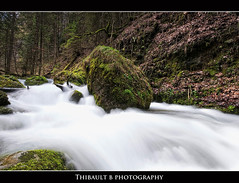 Day 138/365 (Thibault B Photography) Tags: longexposure france tree green water grass rock photoshop grenoble river landscape aperture nikon eau raw view tripod smooth sigma vert rivière paysage stroll foret arbre vue rocher mousse herbe manfrotto cokinfilter sigma1020mm cokin isère trepied lensfilter nd8 p121s manfrotto190xprob d300s nikond300s