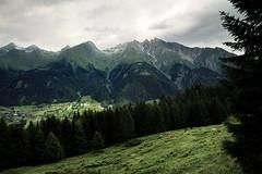 virgen valley (Youronas) Tags: wood mountains alps forest landscape tirol cows meadow wiesen berge valley alpini alpen landschaft wald virgen tyrol tal khe osttirol hohetauern tauern virgental easttyrol uppertauern virgenvalley