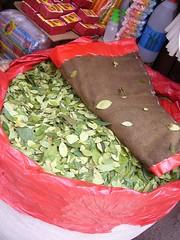 Potosi feuilles de coca