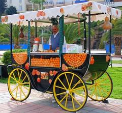 Taze Portakal / Fresh Orange (syrsln / ibo guido) Tags: turkey relax nikon tour trkiye antalya april guide dslr 2008 alanya nisan gezi objektif d80 kartpostal enstantane rehber deklanr fotogezgin syrsln flickrturkey flickrsevenler flickrlovers