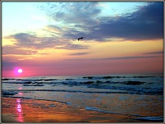 Sunrise (Blue Oblivion) Tags: ocean sea summer color me nature water landscape texas scene score reflexions potofgold thenatureconservancy flickrland withsky theworldisbeautiful anawesomeshot incrediblenature excapture ourworldofnature deepcolorsofnature phantasticphotogoldaward theworldofnature earthtouch oneearthonehomenaturephotos flickrofhope ddsnet qualitypixels defendersnaturemacroandcloseup flickrgreenjoinuspool throughyoureyestoours photographersgonewild natureandnothingelse photographersreallygonewild thebestofwithsky catchycolorsflickrish fl0509