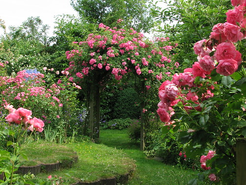 صور اجمل حدائق الورد 2013 ، صور حدائق الزهور 2013 ، صور حدائق ورد 2013 2591127492_7e0e02ddc7.jpg
