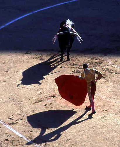 Bull Fight 7