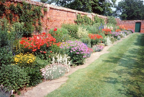 An Herbaceous Border In June