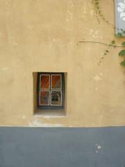 chien (minou*) Tags: dog chien france window provence luberon fenetre