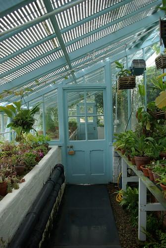 Darwin's Greenhouse2