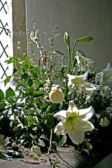 flowers by the church window (bigjohn052) Tags: flora floraandfauna