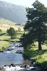 ANDORRA- Vall d'Incles (fer55.) Tags: andorra pirineos pirineus pyréneés valldincles fer55 riudincles wleiear32 adpnvisa wleadpnvisa ferranllorens
