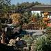 Irvine and Laguna 090s