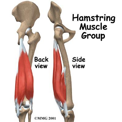 Hamstring Flexibility: 6 Tips to Loosen Up