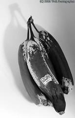 Rotten Naners 2 (tina2000tx) Tags: blackandwhite bw monochrome bananas grayscale dslr canoneos dole rottenfood blackwhitephotos canonxs canonefs1855mmf3556isusm tina2000tx
