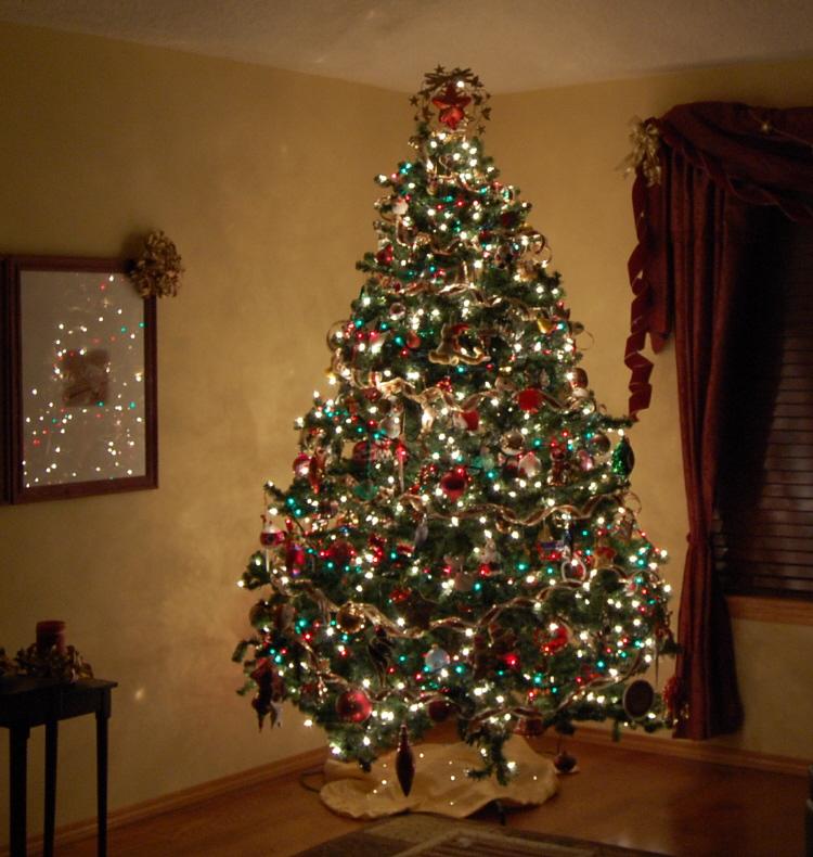 08 tree