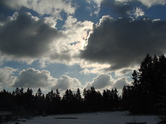 DSC00515 (nwpainter) Tags: sky contrast frozen shadowsandlight tacomaartmuseum northwestlandscapes