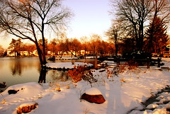 All about me! (ineedathis) Tags: park sunset snow newyork pond huntington longisland 338