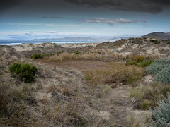 The Morro Strand State Beach back dunes adjacent to the Cloisters - by mikebaird