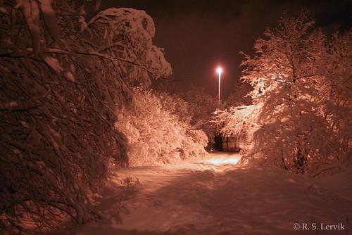 1/365 - It snowed