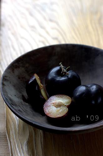 schulten plums ab '09