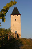 36-Tower in the vineyards Bacharach, Germany