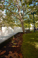 Yerba Buena Gardens (by: Justin Baugh, creative commons license)