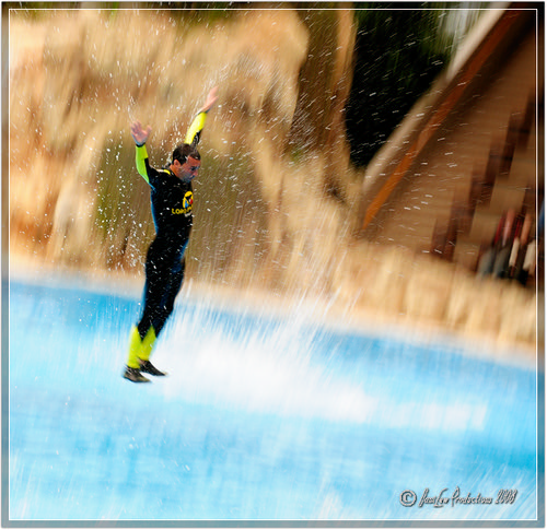 Man propelled in Dolphin show at Loro Parque in Tenerife, Canary Islands, Spain - taken with a Nikon D300 camera and Nikon 18-200 VR lens