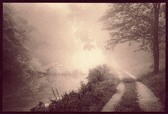 Into the Light (isvibilsky) Tags: fog newjersey alternativeprocess altprocess platinumpalladium drcanalstatepark platinotype