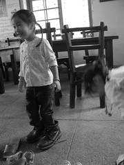 20090404-zozo穿爸爸鞋