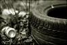 Life is Beautiful (Mayastar) Tags: stilllife tyre tincan lifeisbeautiful trashbit mayastar