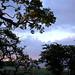 Dawn Lane Photo 19