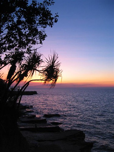Nightcliff Pandanus Sunset