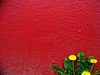 weeds in Port Jervis (Pixel Fantasy) Tags: red building weeds portjervis anawesomeshot