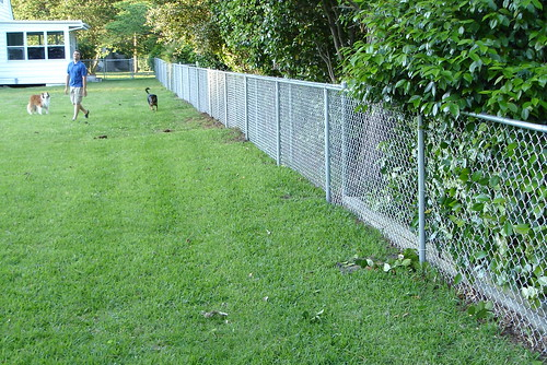 brand new fence!