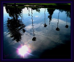 The Reflection of Ourselves (lgal3824) Tags: trees lake reflection love water pond lakes explore blueribbonwinner mywinners anawesomeshot