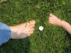 Her Favorite Lawn  Flower (Brave Heart) Tags: shadow 2 two white flower feet grass fun foot whiteflower photo weeds weed toes humor lawn picture lookdown barefoot barefeet veins morningglory 2008 twofeet barefooted flickrtoes footveins flickrfeet flickrfoot flickrveins