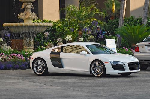 Audi White Audi R Picture - White audi r8