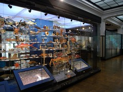 Tokyo 2008 - 國立科學博物館 - 日本館 (2)