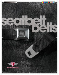Buckledown Seatbelt Belt Catalog - Front Cover
