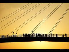 (Anderson Fang) Tags: sunset silhouette fishermanswharf  hof  thepinnacle danshui youvsthebest thegreatshooter iwbtroyalaward thecelebrationof~life~ thepinnaclehof