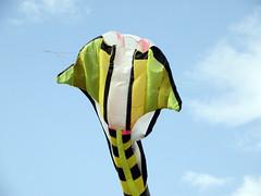 El Cobra (Piero Gentili) Tags: sky kite cute canon giant fly flying nice mare shot best kites cielo canona1 gigante piero 20051 vola aquiloni volare aquilone pierpaolo gentili lancio lanciare goldstaraward sonyalpha350 piero20051 pierogentili gentilipiero gentiligentili pierpaologentili gentilipierpaolo