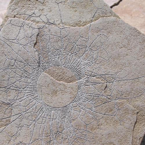 laser engraved sandstone