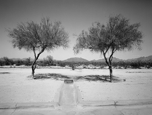 """Rest Area Interstate 10, Arizona"" by Timothy Taylor"