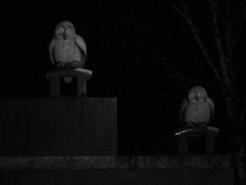 Night Guardians