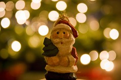 Santa and his tree (scottfidd) Tags: santa christmas xmas light red tree green hat lights bokeh christmastree evergreen trunk santaclause clause beart