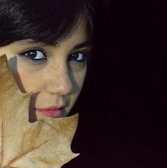 (marco zeppetella) Tags: portrait fall leaf retrato marco alessandra autunno ritratto zeppetella ritrattidiof