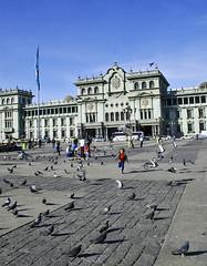 Parque Centenario, Guatemala. (Rafael Amado Deras) Tags: guatemala niños viajes palomas parquecentral centroamerica parquecentenario palaciodelacultura